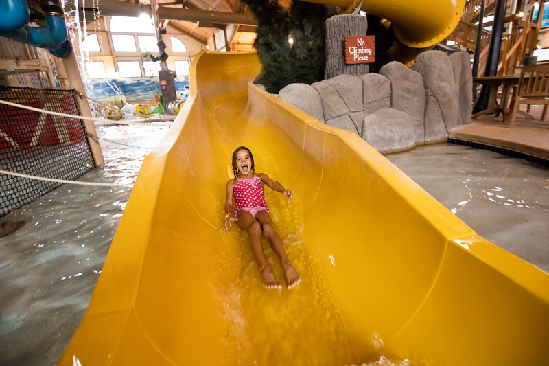 Country_Springs_Waterpark_Kennel-5100.jpg
