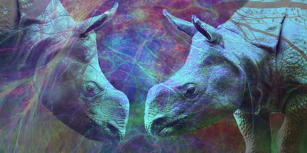 WPZ - Rhino