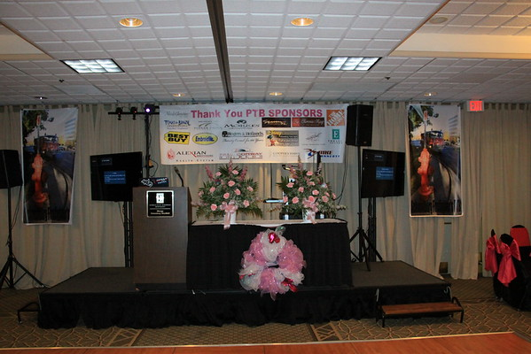 October 2013 - 2nd annual Pink Tie Ball