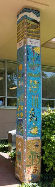 Biodiversity Towers (Robbins Hall)