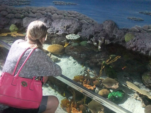 Katie's Colorado Vacation 3 Aquarium