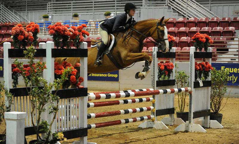 Horse show (66).jpg