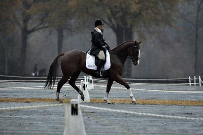 081130 USEA Horse Trial
