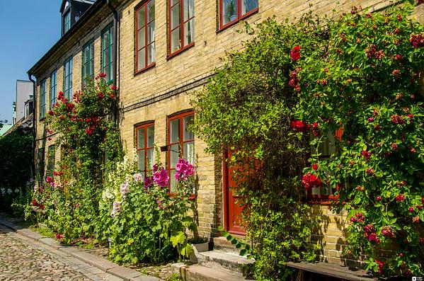 Summer in Lund / Sommer i Lund