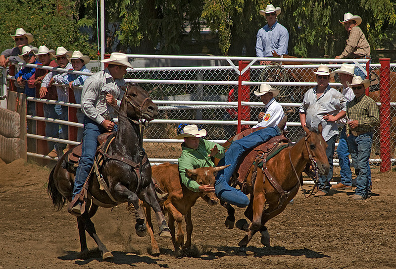COOMBS RODEO-2009-3505A.jpg