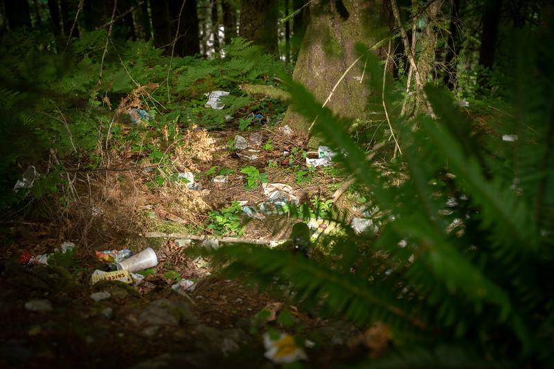1907_01_garbage-08782.jpg