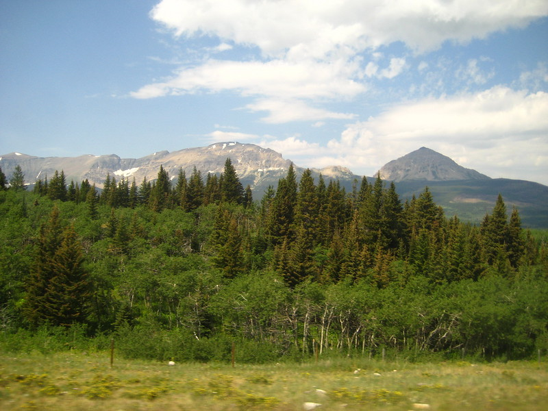 2008-07-24-YOCAMA-Montana_2715.jpg