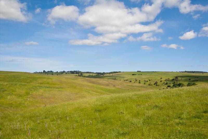 Pastures half-way between Canberra and Jenolan