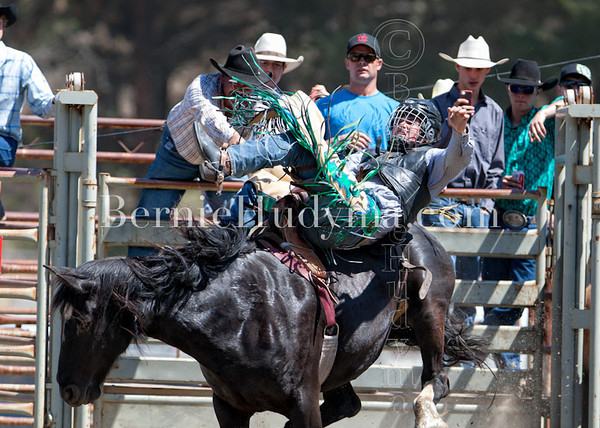 Bronc Events- Clinton 2012