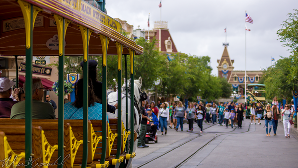 Disneyland Resort, Disneyland, Main Street USA, Horse, Street, Car