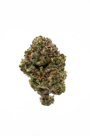 Cannabis Photography | Fresh Baked, Boulder, Colorado