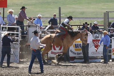 Saddle Bronc Riding