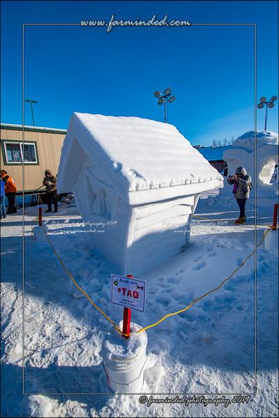 Alaska State Snow Scuplture Championship