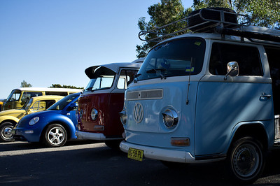 Bugs & Buses 2013