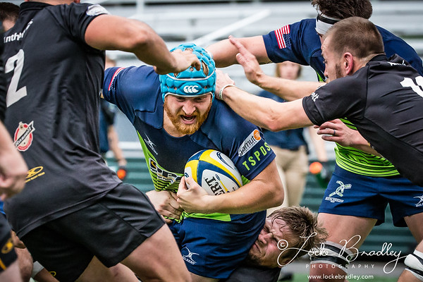 Seattle Saracen's Rugby