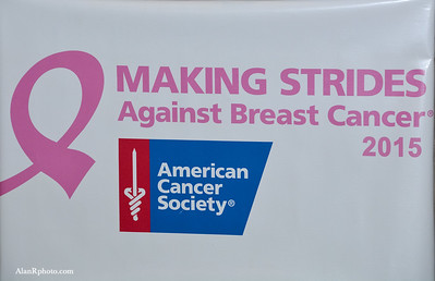Making Strides Kickoff Party 2015