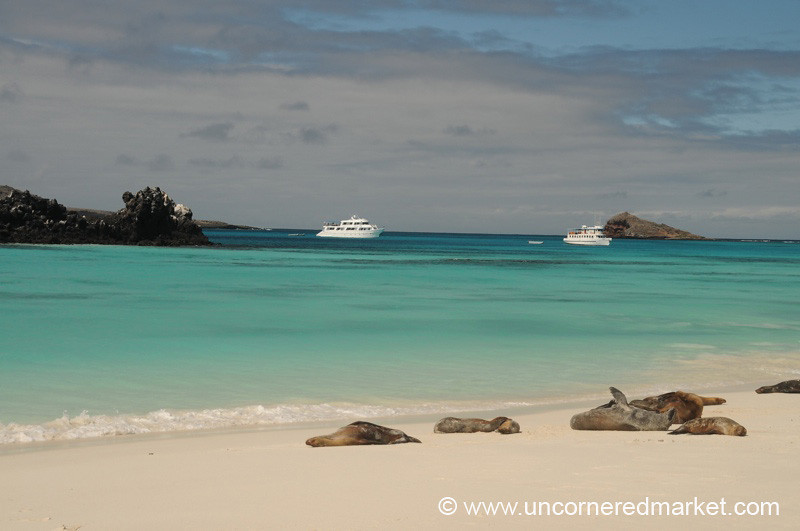 Slice of Paradise - Galapagos Islands