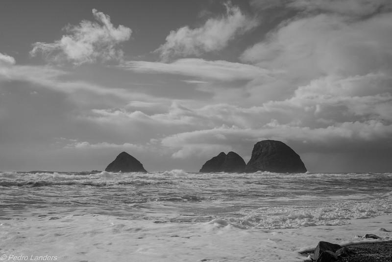 Oregon Coast B&W