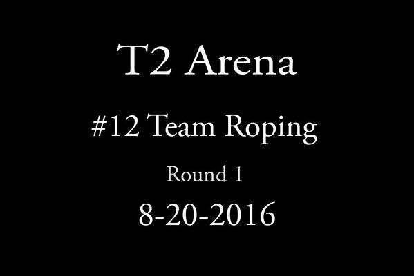 8-20-2016 #12 Roping Round 1