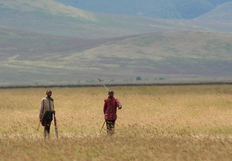 maasai. ngorongoro crater