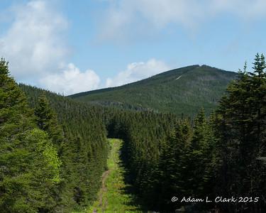 Boundary Peak 6/13/15