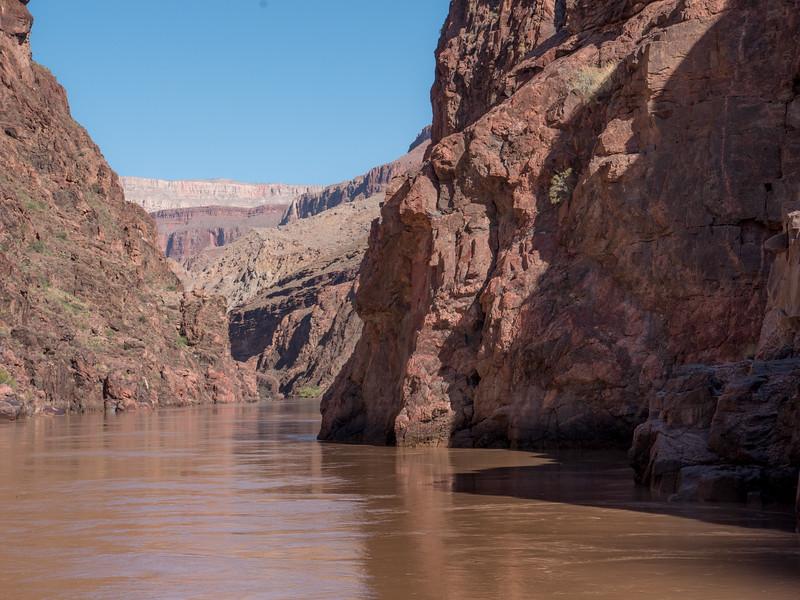 Grand Canyon-45.jpg