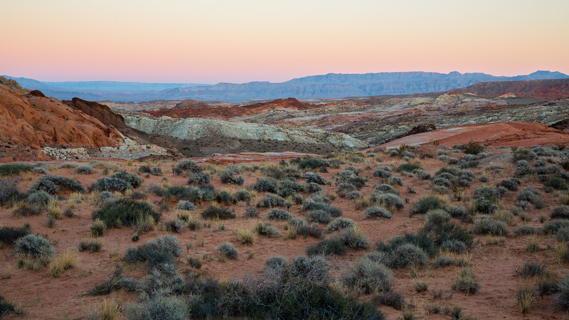 WVWS_Valley of Fire-5466.jpg