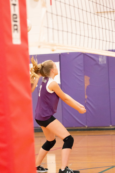 IMG_8802 volleyball oct2018.jpg