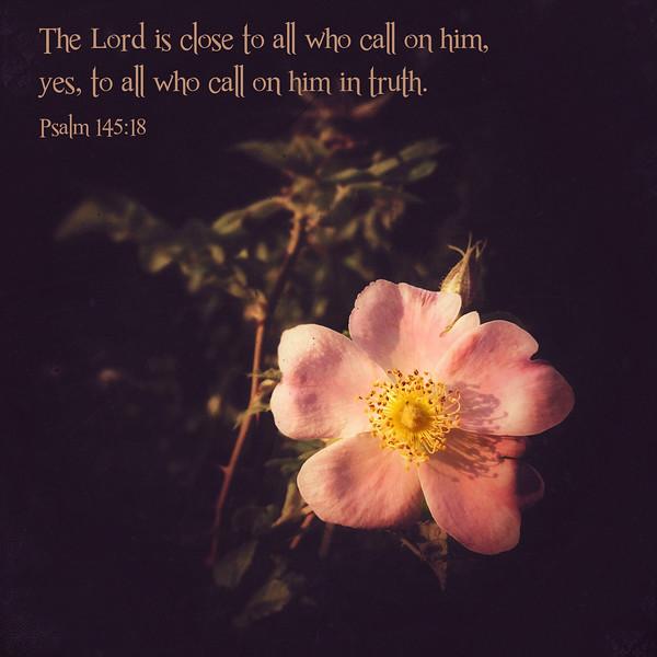 19_Psalm145-18_NJ_2015-1-17.jpg
