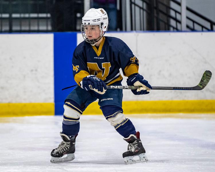 2019-02-03-Ryan-Naughton-Hockey-15.jpg