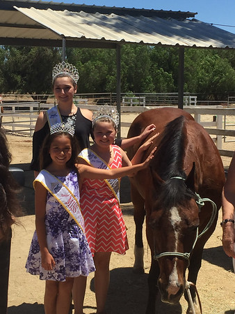 Murrieta EQ Horse Ranch Grand Opening