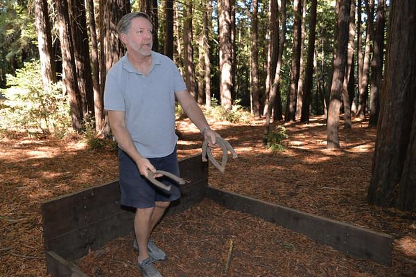 Sequoia Picnic
