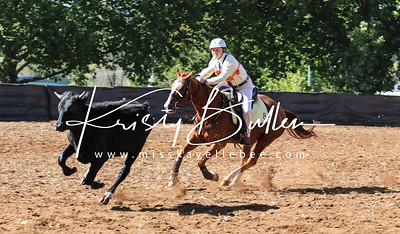 NSW Pony Club State Campdrafting Champs - Round 1