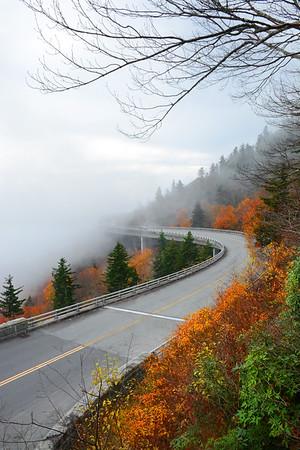 Foggy day in Blue Ridge Mountains