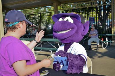 Bats Baseball 2012