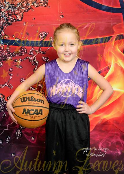1G St Alcuin Hawks - TNYMCA Basketball