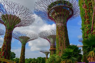 Singapore Feb 2019