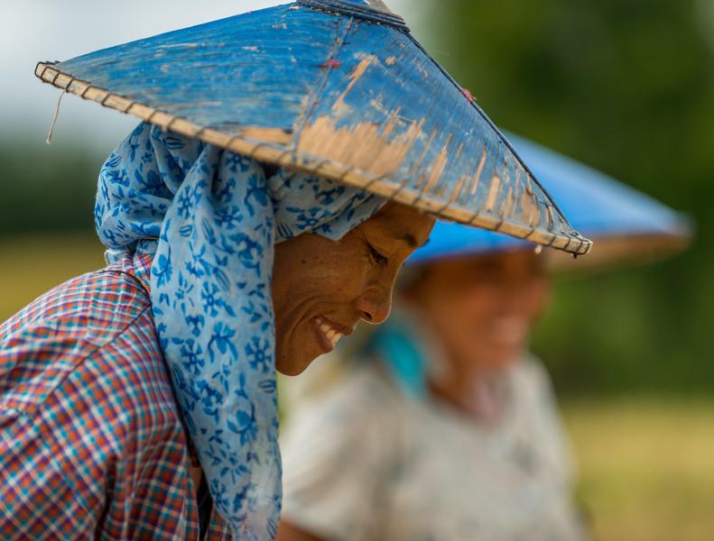 field worker blue hat.jpg