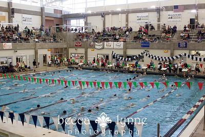 december 2015 swim meet