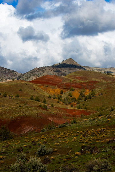John Day Fossil Beds NM-Sheep Rock Unit