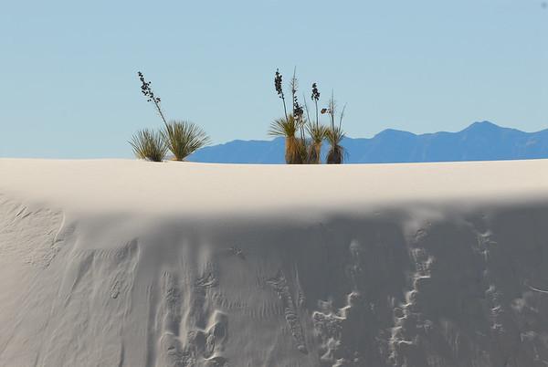 White Sands National Monument 2009