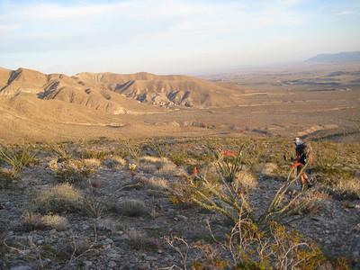 WBC Desert Backpack 2011