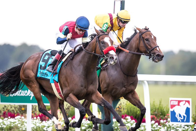 Insta Erma (Pioneerof the Nile) wins the Kentucky Downs Ladies Turf (G3) at Kentucky Downs on 9.8.2018. Drayden Van Dyke up, Richard Baltas trainer, Medallion Racing, Premier Racing Club, Jerry McClanahan and Christopher Johnson owners.