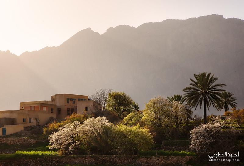 Oman (113).jpg
