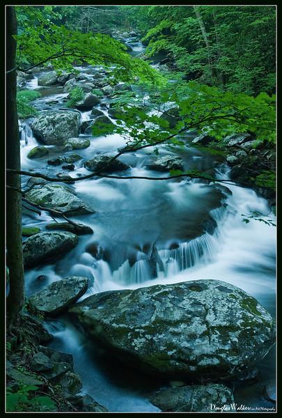 Smoky Mountains 2009
