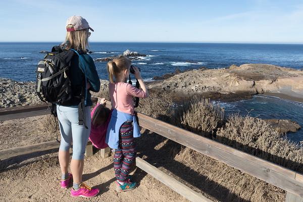 Monterey (2017)