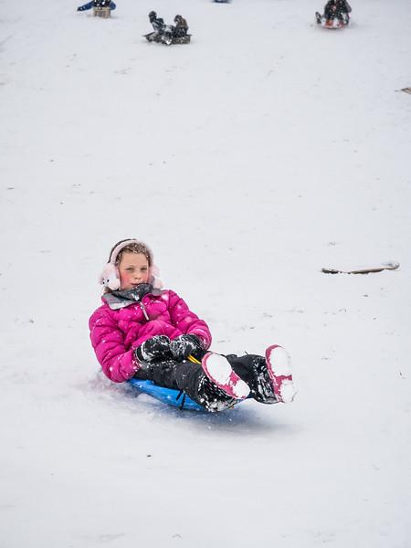 Snow Days 2015-2270296.jpg
