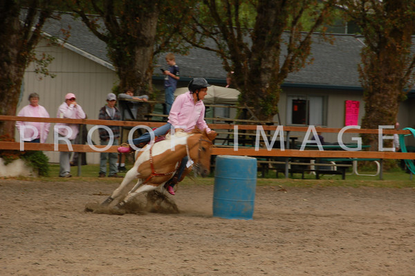 Pink Ribbon Horse event