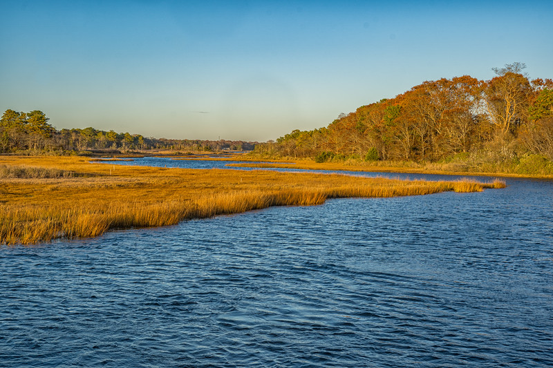West Yarmouth Parkers River.jpg