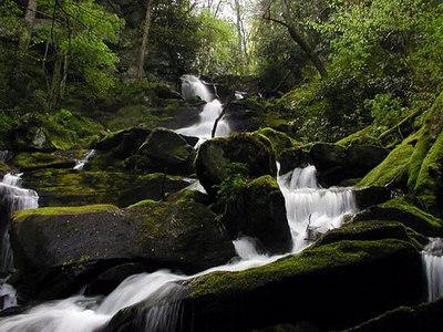 Mill-Creek-in-April.jpg
